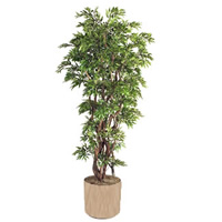 Tall Artificial Plant hire